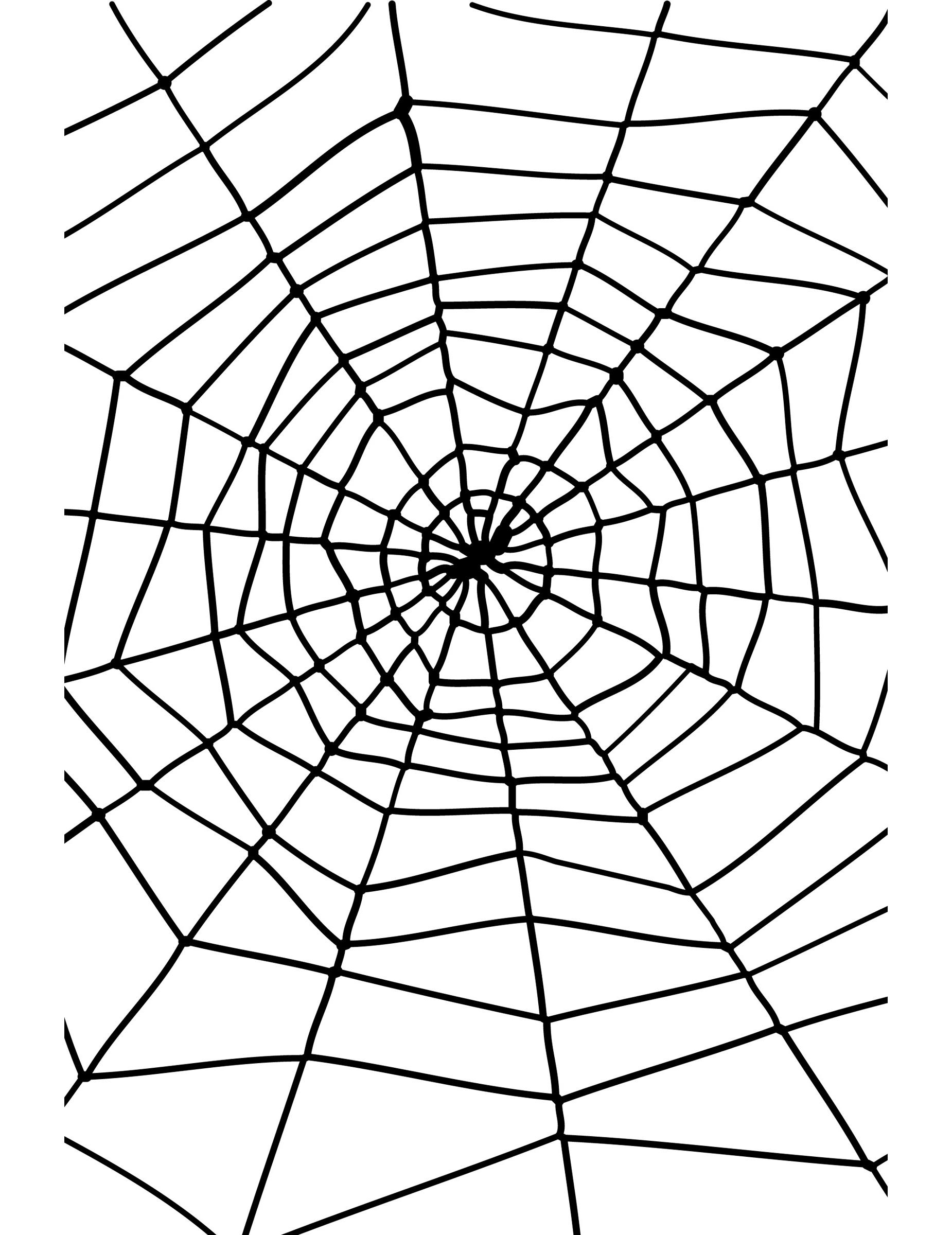 toile d u0026 39 araign u00e9e halloween  d u00e9coration anniversaire et