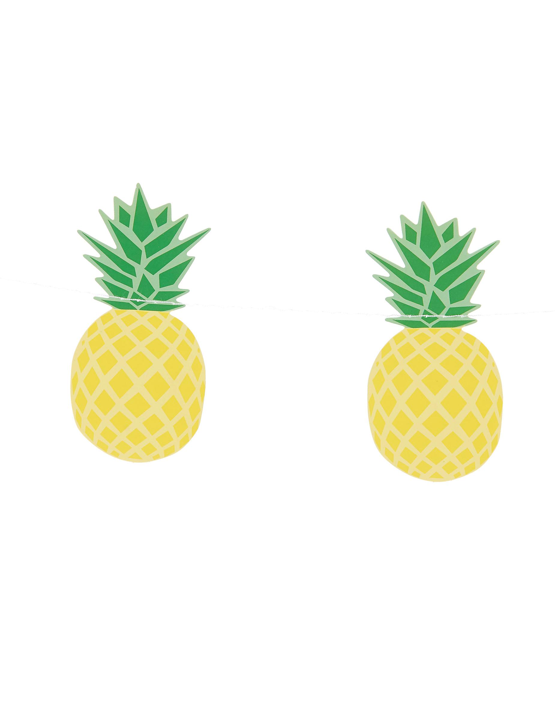 guirlande petit ananas 3 m d coration anniversaire et