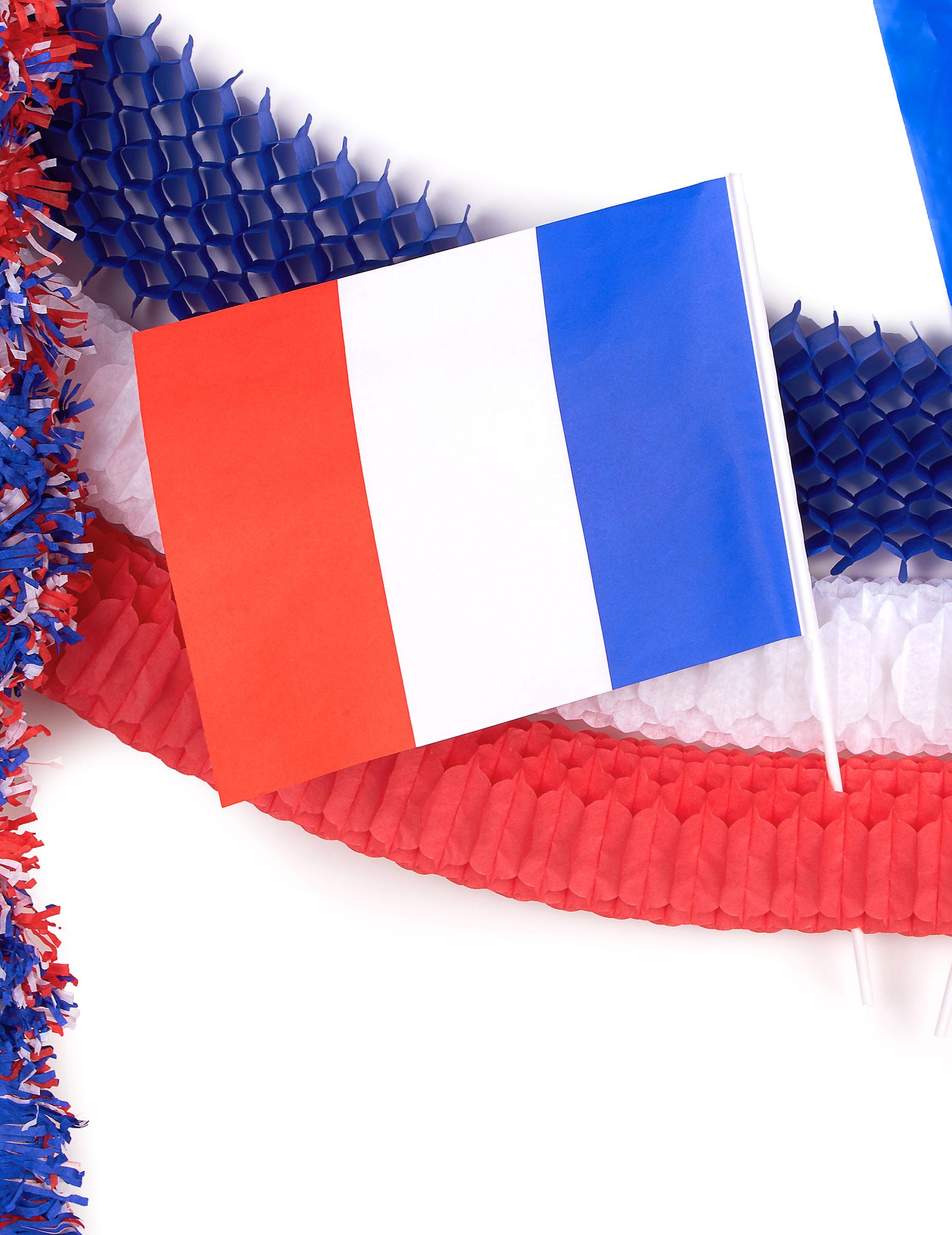 Kit d coration de salle france d coration anniversaire et for Decoration en france
