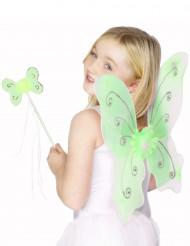 Kit papillon vert fille