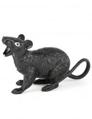 Rat Halloween