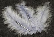 20 plumes de décoration grises