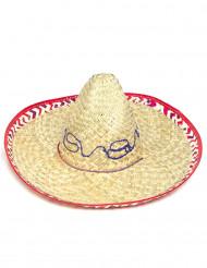Sombrero adulte