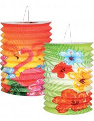 2 Lanternes Hawaï