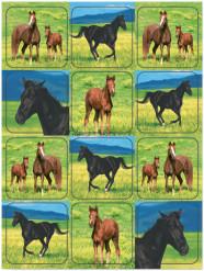 4 Feuilles de Stickers Chevaux Sauvages