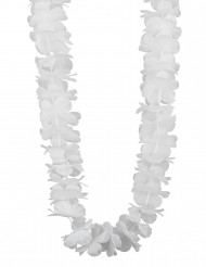 Collier hawaï blanc