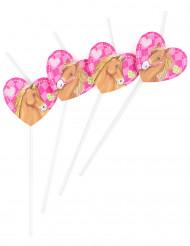 6 Pailles Cheval