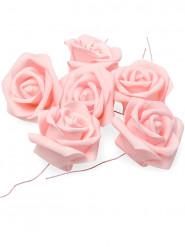6 Roses rose pâle