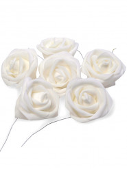 6 Roses blanches