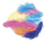 Plumettes multicolores