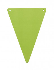 5 Fanions DIY carton vert anis