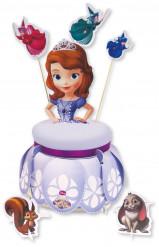 Kit de déco pour gâteau Princesse Sofia ™