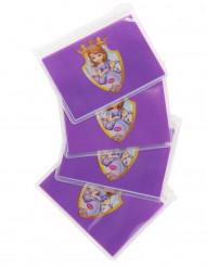 4 Petites pochettes Princesse Sofia™
