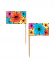 50 Pics Hibiscus