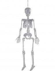 Squelette argenté à suspendre 92 cm Halloween