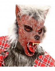 Masque loup garou avec poils adulte Halloween