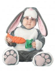 Déguisement lapin pour bébé - Premium