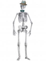 Suspension squelette rétro