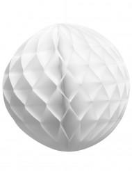 Boule en papier alvéolée blanche 25 cm