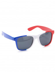 Lunettes supporter France adulte