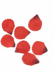 100 Pétales en tissu rouge sombre