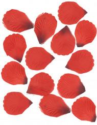 100 Pétales de rose en tissu rouge sombre