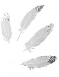 6 Plumes blanches à paillettes argentées 16 cm