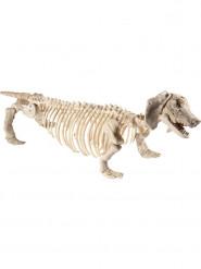 Décoration squelette de chien 55 cm Halloween