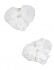 2 Orchidées flottantes blanches