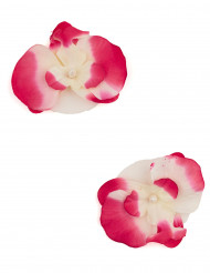 2 Orchidées flottantes fuchsia