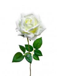 Fleur artificielle Rose ouverte 80 cm