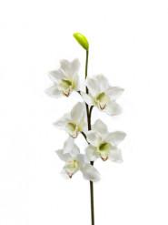 Fleur artificielle branche d'orchidée 80 cm