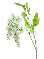 Feur artificielle Glycine 115 cm