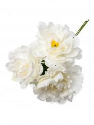 Bouquet 3 pivoines blanches