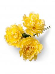 Bouquet 3 pivoines jaunes