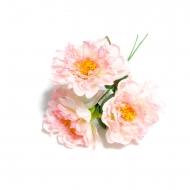 Bouquet 3 pivoires roses