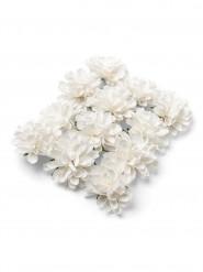 12 Pivoines en papier blanches 4 cm