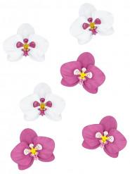 6 Décorations de table fleurs d'orchidée