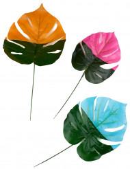 3 Feuilles tropicales colorées