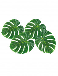 4 Sets de tables feuilles de palmier 33 x 27 cm