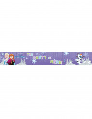 3 Bannières aluminium La Reine des Neiges Frozen™ 90 x 13 cm