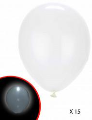 15 Ballons LED blancs Illooms ®