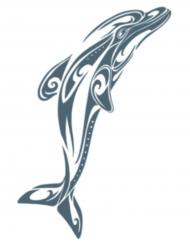 Tatouage éphémère corps dauphin adulte