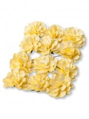 12 Pivoines en papier jaunes 4 cm