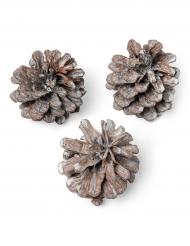 Lot de pommes de pin cérusées 5 cm