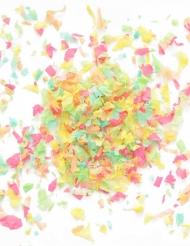 Mini sachet confettis papier ignifugé colorés 20 gr