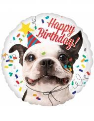 Ballon aluminium Happy Birthday Dog 43 cm