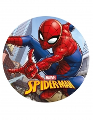 Disque azyme Spiderman ™ 20 cm