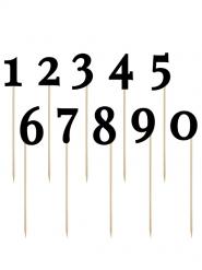 10 Chiffres noirs sur pic 26 cm