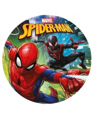 Disque en sucre Spiderman™ 20 cm